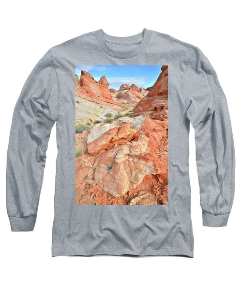 Canyon Color In Valley Of Fire Long Sleeve T-Shirt by Ray Mathis