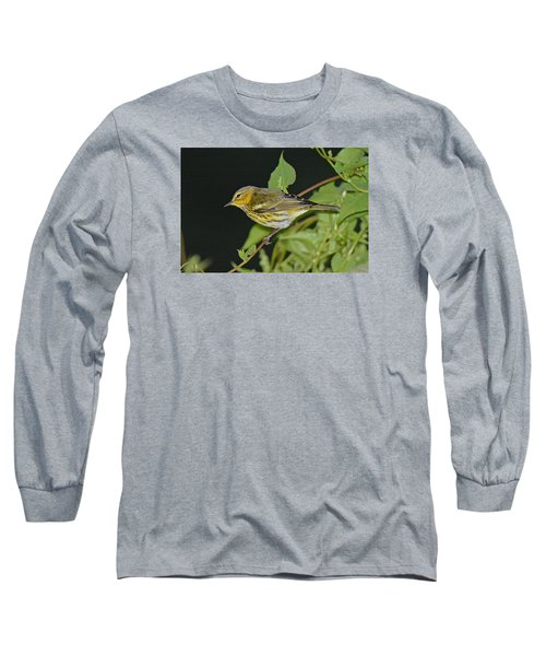 Cape May Warbler Long Sleeve T-Shirt by Alan Lenk