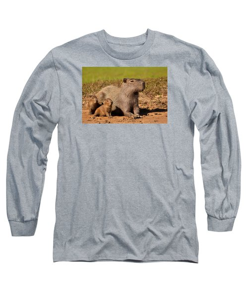 Capybara Family Enjoying Sunset Long Sleeve T-Shirt by Aivar Mikko