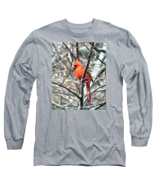 Cardinal 2 Long Sleeve T-Shirt by George Jones