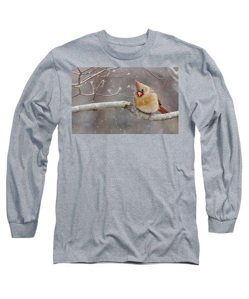Cardinal And Falling Snow Long Sleeve T-Shirt