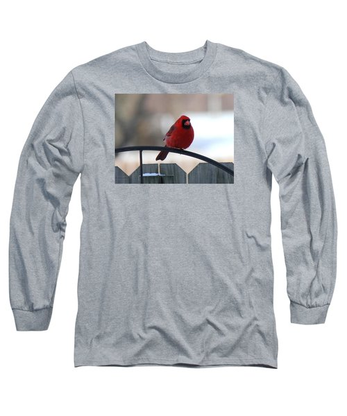 Cardinal Closeup Long Sleeve T-Shirt