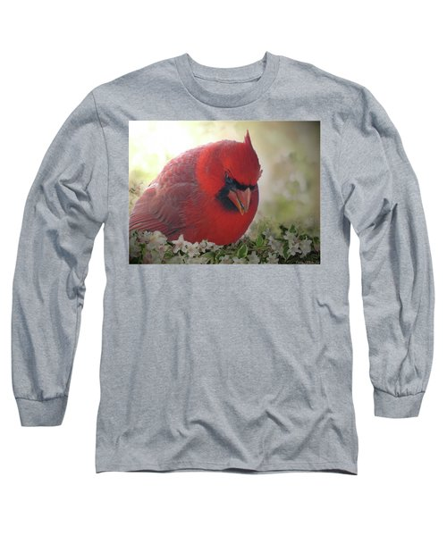 Long Sleeve T-Shirt featuring the photograph Cardinal In Flowers by Debbie Portwood