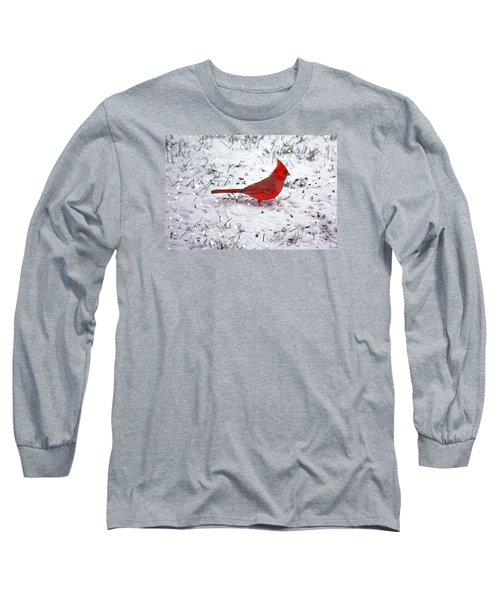 Cardinal In The Snow Long Sleeve T-Shirt by Suzanne Stout