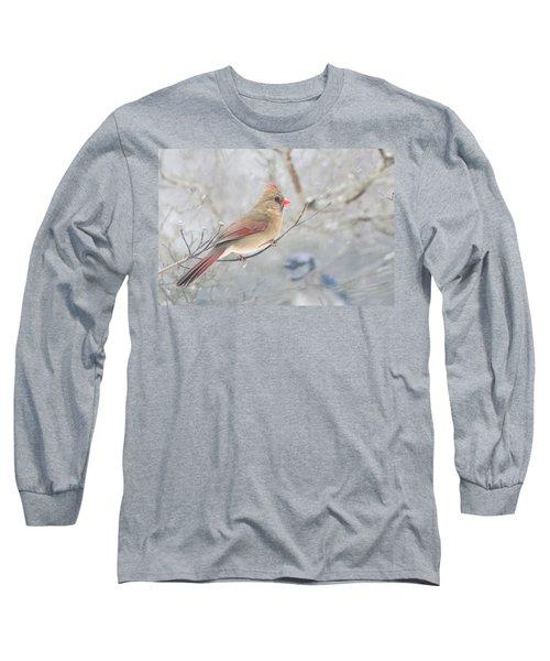 Cardinal In Winter Long Sleeve T-Shirt