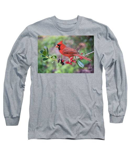 Cardinal On Holly Branch Long Sleeve T-Shirt by Bonnie Barry