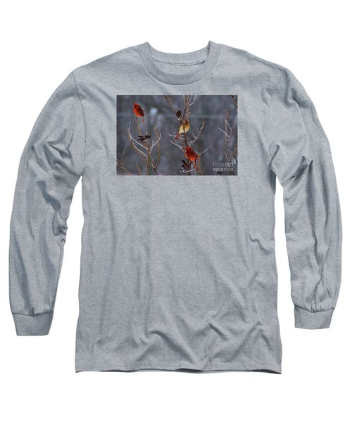 Long Sleeve T-Shirt featuring the photograph Cardinal Trio by Mark McReynolds