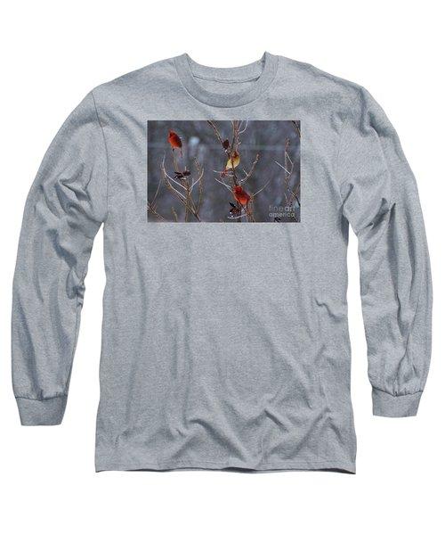Cardinal Trio Long Sleeve T-Shirt