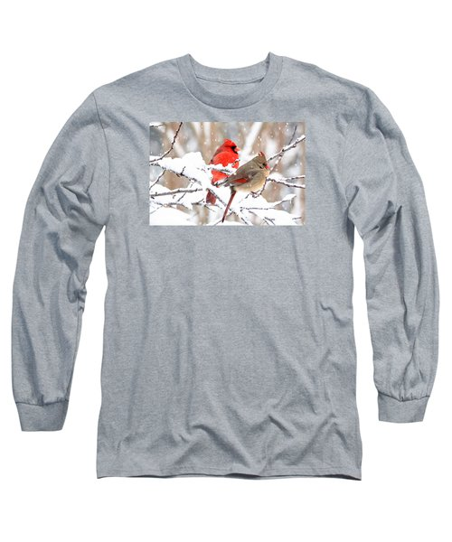 Cardinals In The Winter Long Sleeve T-Shirt