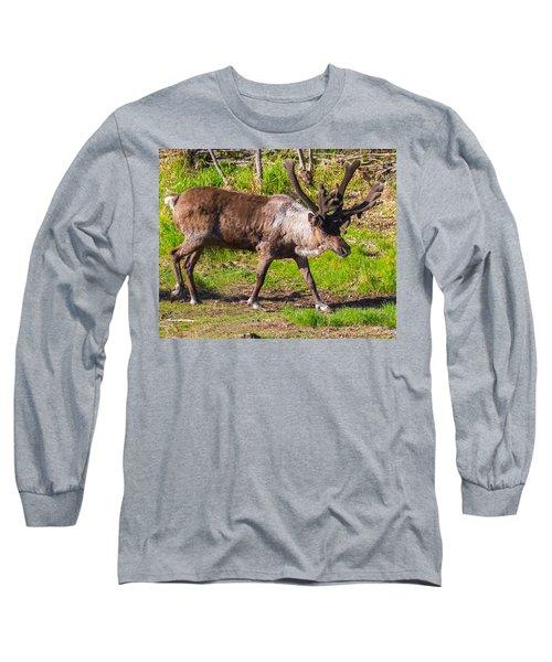 Caribou Antlers In Velvet Long Sleeve T-Shirt by Allan Levin