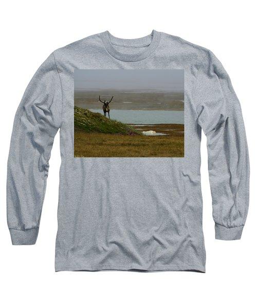 Caribou Fog Long Sleeve T-Shirt by Anthony Jones