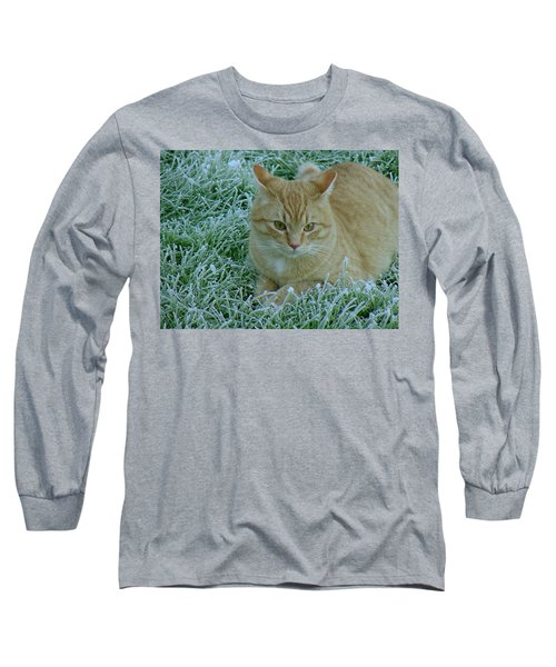 Cat In Frosty Grass Long Sleeve T-Shirt