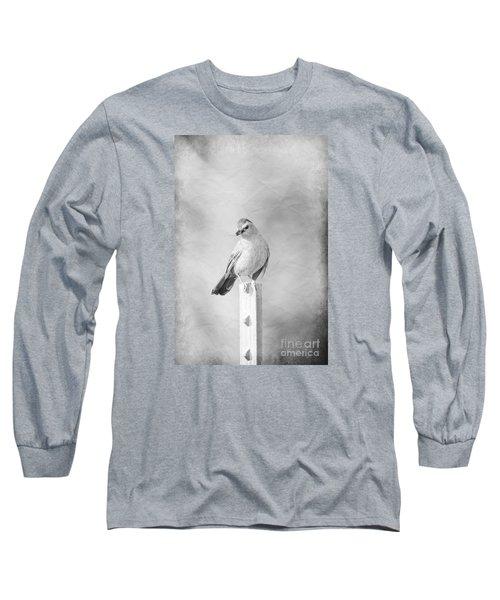 Catbird Long Sleeve T-Shirt