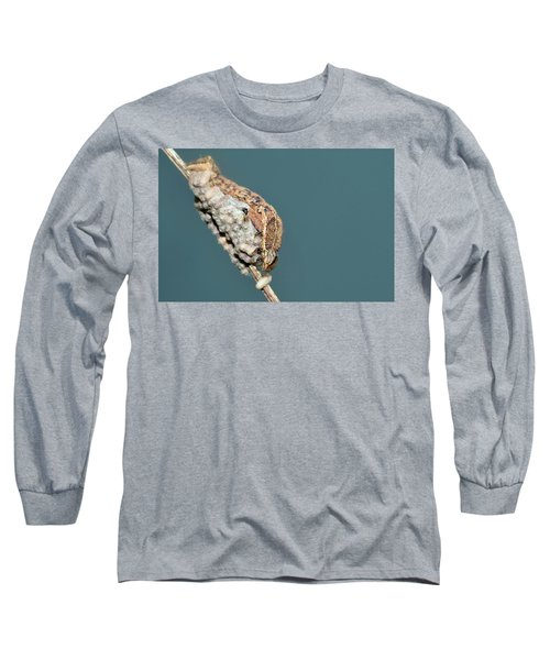 Caterpillar And Parasitic Wasp/eggs Long Sleeve T-Shirt