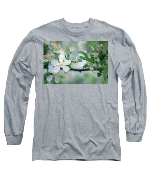 Caterpillar On A Tree Blossom Long Sleeve T-Shirt