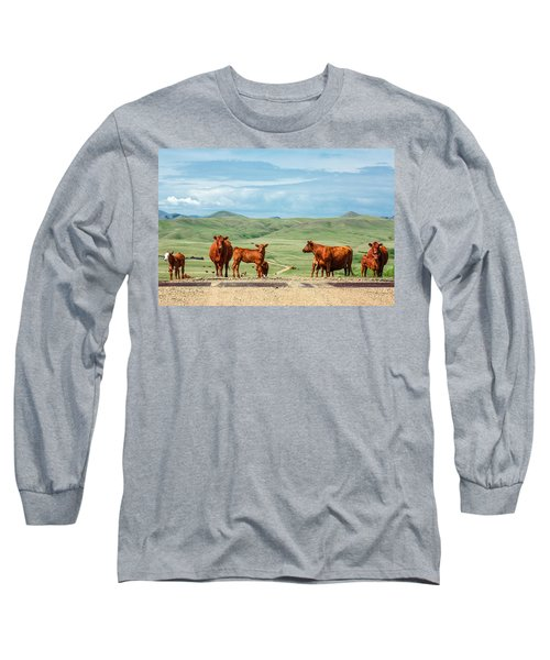 Cattle Guards Long Sleeve T-Shirt