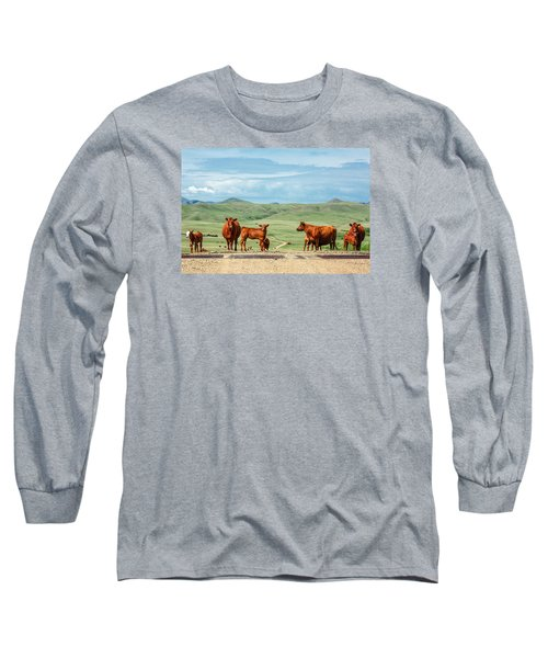 Cattle Guards Long Sleeve T-Shirt