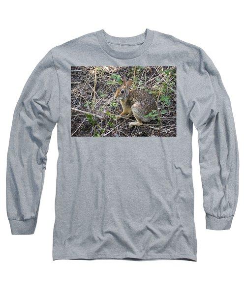 Cedar Hill Bunny Long Sleeve T-Shirt by Ricky Dean