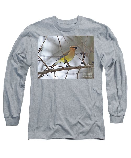 Cedar Wax Wing-2 Long Sleeve T-Shirt by Robert Pearson