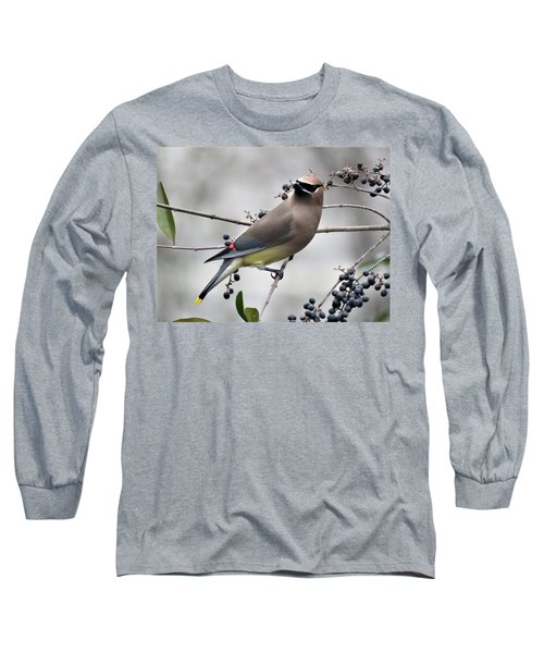 Cedar Waxwing 1 Long Sleeve T-Shirt by Kathy Long
