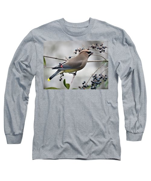 Cedar Waxwing 2 Long Sleeve T-Shirt by Kathy Long