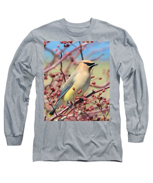 Long Sleeve T-Shirt featuring the photograph Cedar Waxwing by Debbie Stahre