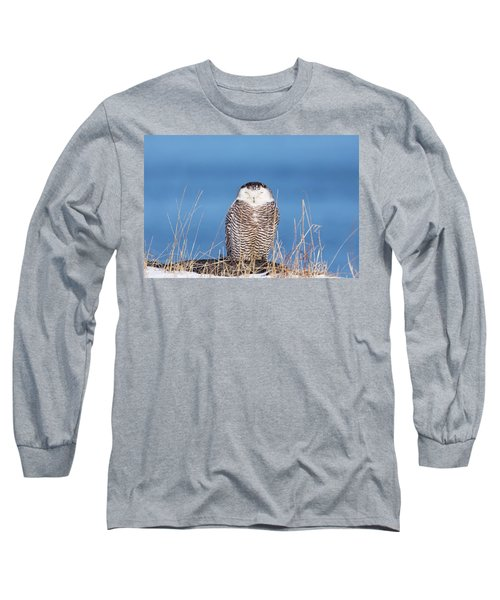 Centered Snowy Owl Long Sleeve T-Shirt