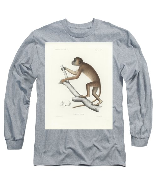 Central Yellow Baboon, Papio C. Cynocephalus Long Sleeve T-Shirt by J D L Franz Wagner