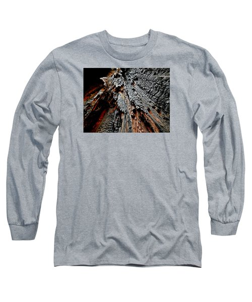Charred Cedar Long Sleeve T-Shirt by Brian Chase