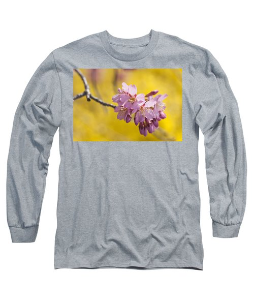 Cherry Blossoms Against Yellow Long Sleeve T-Shirt