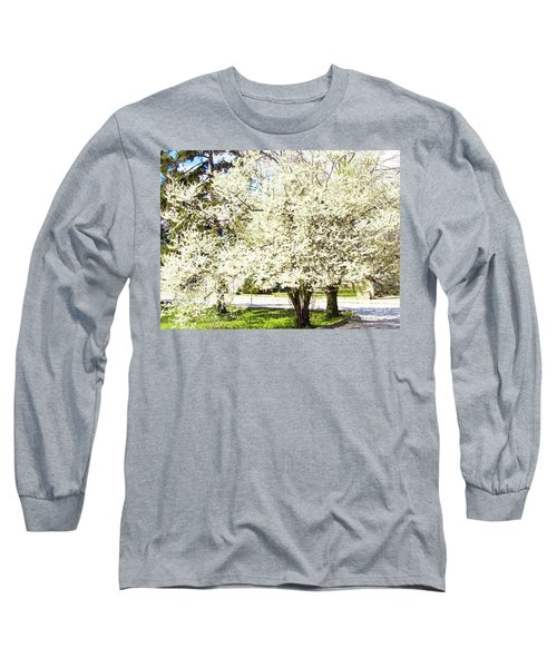 Cherry Trees In Blossom Long Sleeve T-Shirt