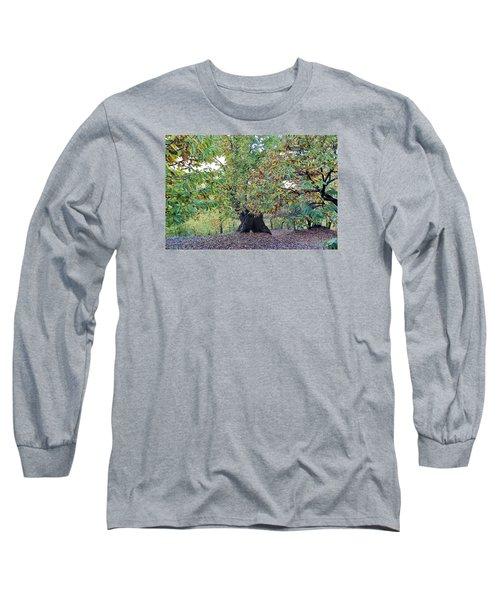Chestnut Tree In Autumn Long Sleeve T-Shirt by Goyo Ambrosio