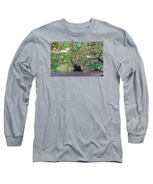 Chestnut Tree In Autumn Long Sleeve T-Shirt