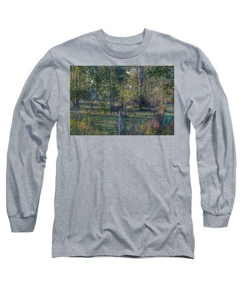 1009 - Chestnut Horse Among The Trees Long Sleeve T-Shirt