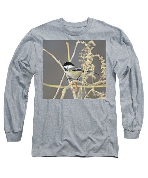 Chickadee-8 Long Sleeve T-Shirt