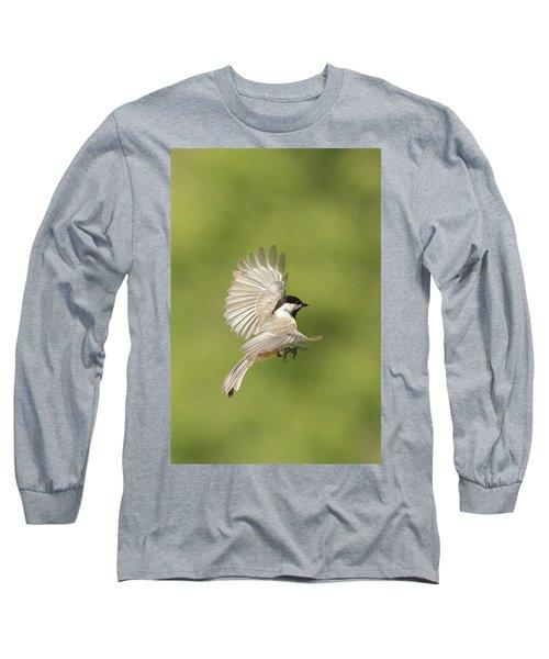 Chickadee In Flight Long Sleeve T-Shirt