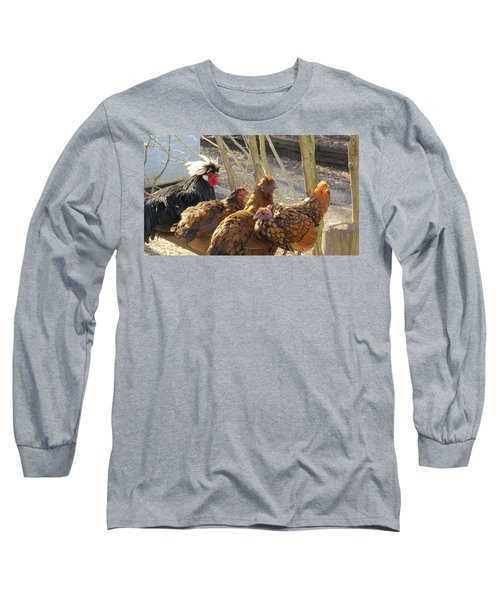 Chicken Protest Long Sleeve T-Shirt by Jeanette Oberholtzer