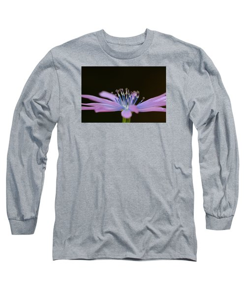 Chicory Long Sleeve T-Shirt by Richard Patmore