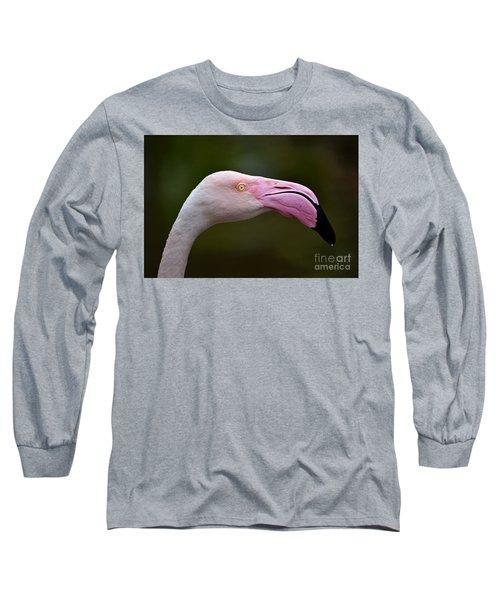 Chilean Flamingo Portrait Long Sleeve T-Shirt