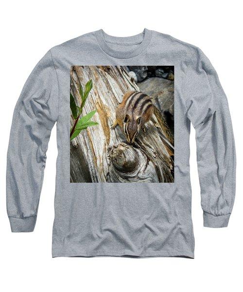 Chipmunk On A Log Long Sleeve T-Shirt
