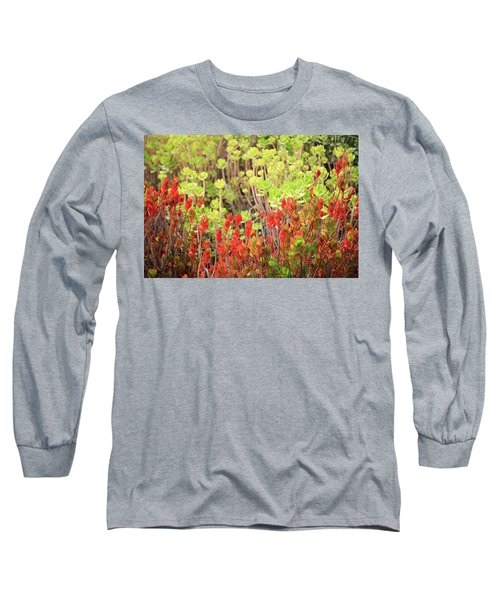 Christmas Cactii Long Sleeve T-Shirt