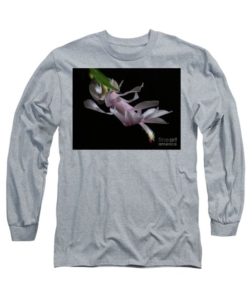 Christmas Cactus Long Sleeve T-Shirt by Marty Fancy