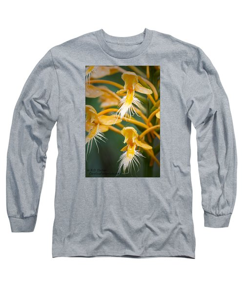 Long Sleeve T-Shirt featuring the photograph Close-up Of Yellow Fringed Orchid by Bob Decker