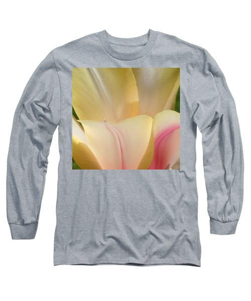 Close-up Tulip Long Sleeve T-Shirt by Karen Molenaar Terrell