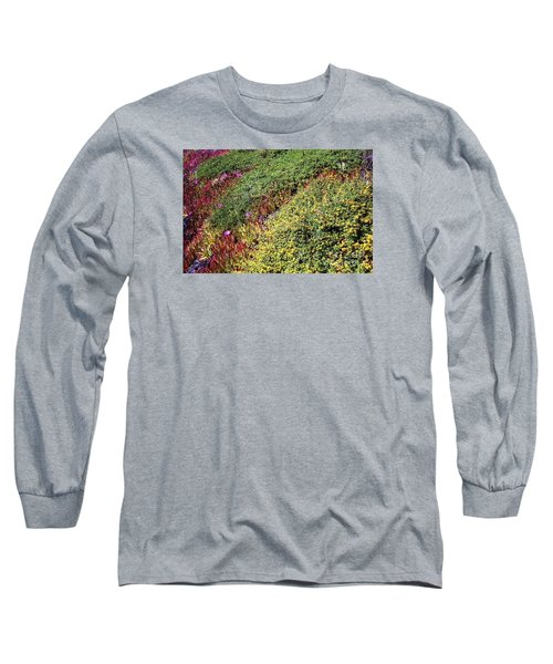 Coastal Flowers And Ice Plant Long Sleeve T-Shirt by Ted Pollard