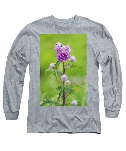 Cobweb Thistle Long Sleeve T-Shirt