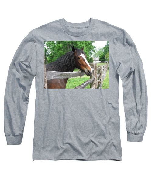 Colonial Horse Long Sleeve T-Shirt