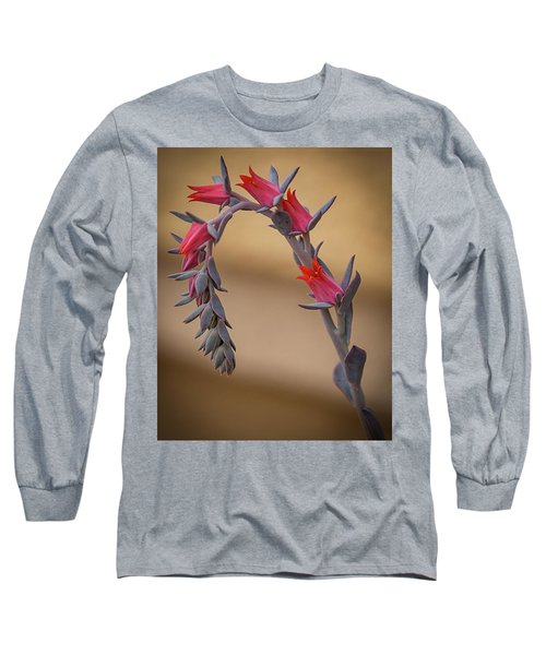 Color And Curve Long Sleeve T-Shirt