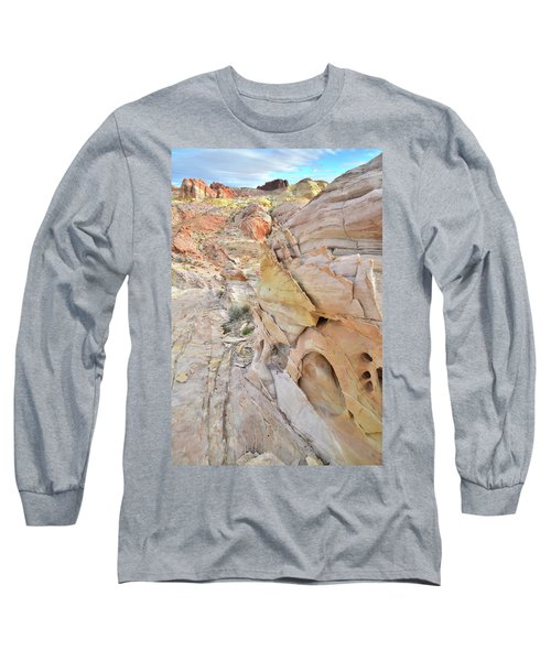 Color At Valley Of Fire State Park Long Sleeve T-Shirt by Ray Mathis