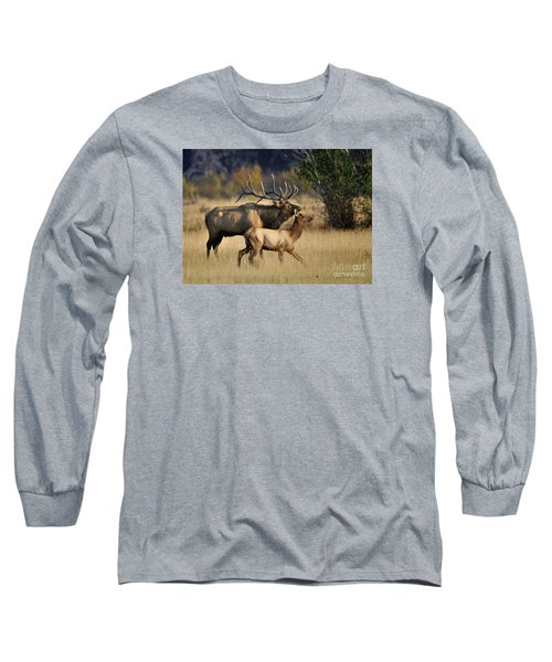 Colorado Elk  Long Sleeve T-Shirt by Nava Thompson